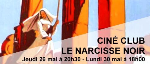 Bandeau Le narcisse noir