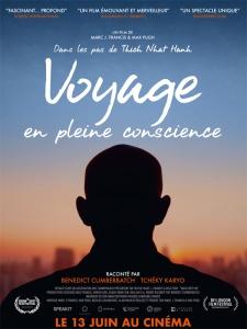 Voyage en pleine conscience - Affiche